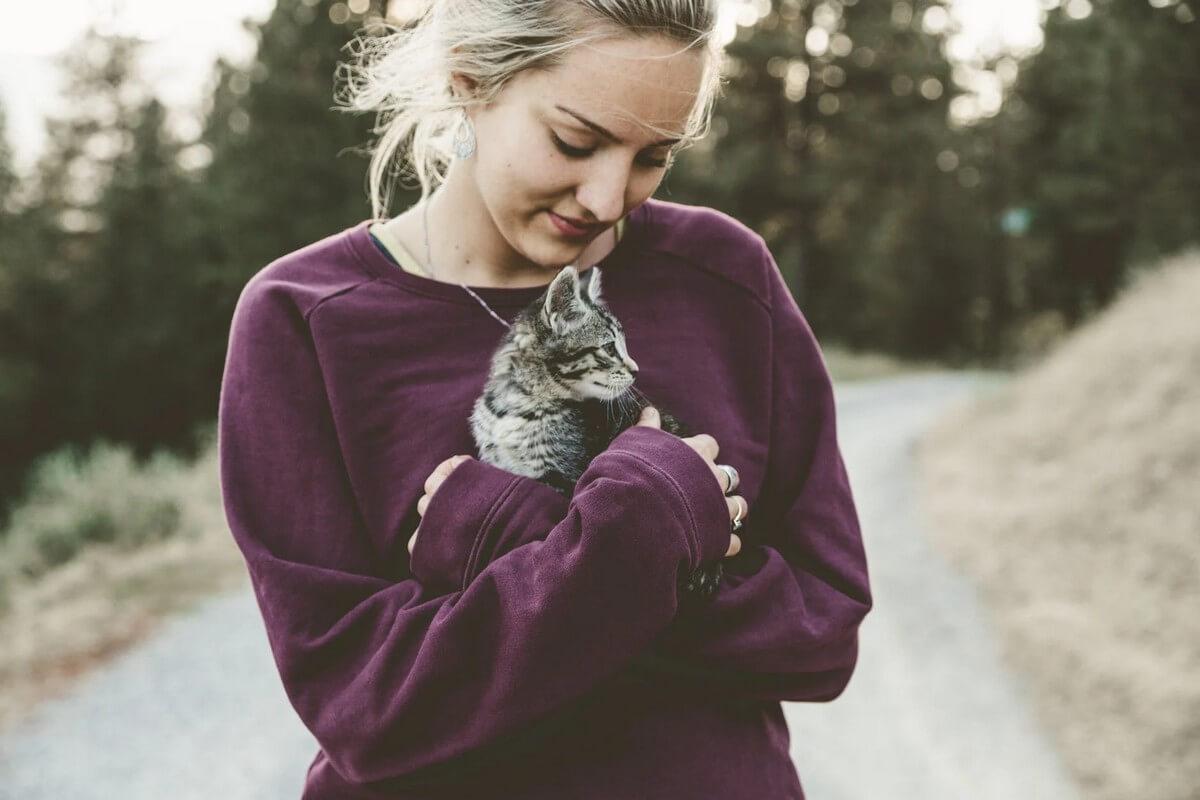 apaiser chat
